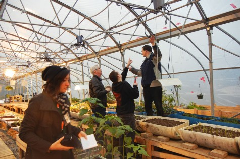 QuantoTech and CNC install LED lights in the Baldy Hughes greenhouse. Photo courtesy of CNC